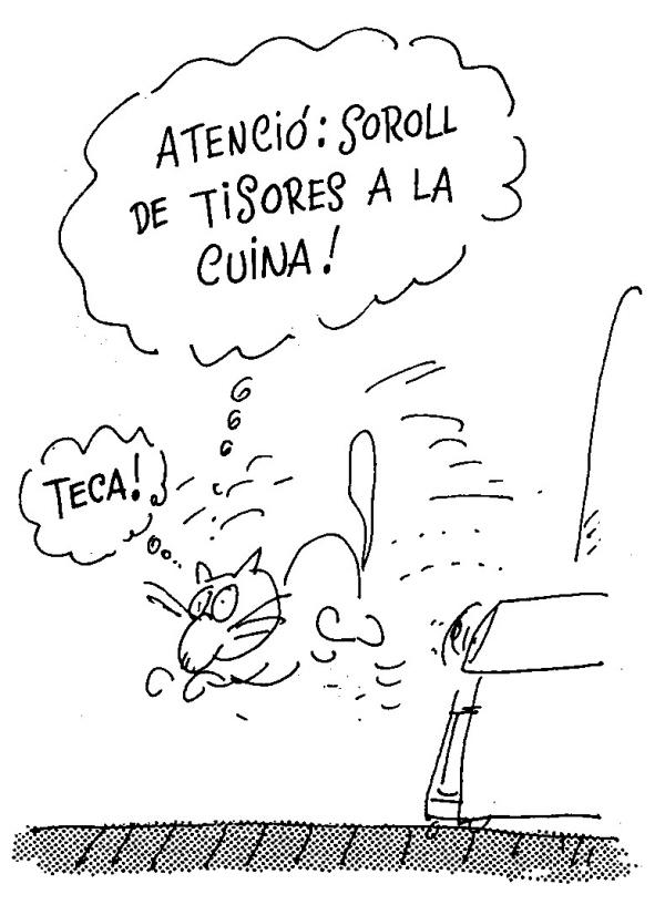 perich_teca